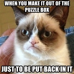 Grumpy Cat  - when you make it out of the puzzle box  just to be put back in it