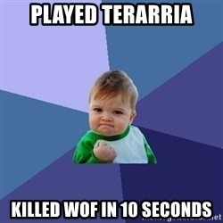 Success Kid - Played Terarria Killed wof in 10 seconds
