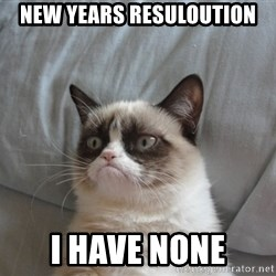 Grumpy Cat  - new years resuloution i have none