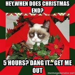 GRUMPY CAT ON CHRISTMAS - hey,when does christmas end? 5 hours? dang it... get me out