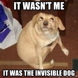 Oh You Dog - It wasn't me It was the invisible dog