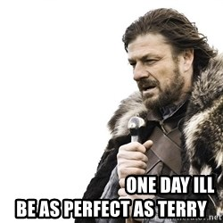 Winter is Coming - ONE DAY ILL BE AS PERFECT AS TERRY