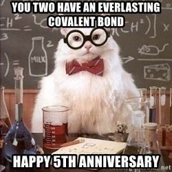 Chemistry Cat - You two have an Everlasting Covalent Bond Happy 5th Anniversary
