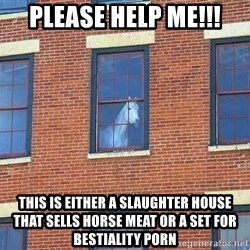 window horse - please help me!!! This is either a slaughter house that sells horse meat or a set for bestiality porn