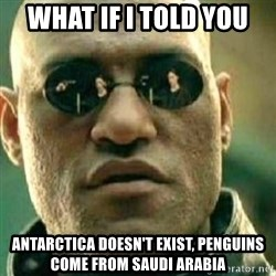 What If I Told You - What if I told you Antarctica doesn't exist, penguins come from Saudi Arabia
