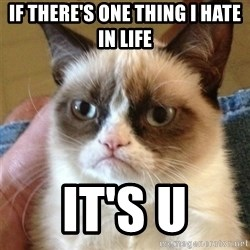 Grumpy Cat  - if there's one thing i hate in life it's u