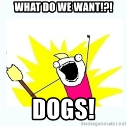 All the things - What do we want!?! Dogs!