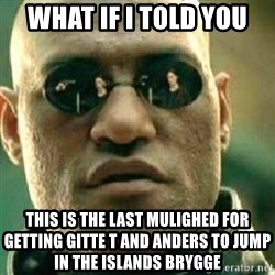 What If I Told You - WHAT IF I TOLD YOU THIS IS THE LAST MULIGHED FOR GETTING GITTE T AND ANDERS TO JUMP IN THE ISLANDS BRYGGE