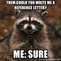 evil raccoon - Them:Could you write me a reference letter? Me: Sure