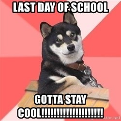 Cool Dog - LAST DAY OF SCHOOL GOTTA STAY COOL!!!!!!!!!!!!!!!!!!!!