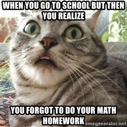 scared cat - when you go to school but then you realize you forgot to do your math homework