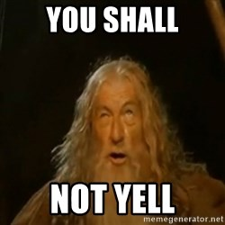 Gandalf You Shall Not Pass - YOU SHALL NOT YELL
