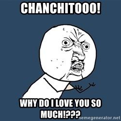 Y U No - Chanchitooo! WHY DO I LOVE YOU SO MUCH!???