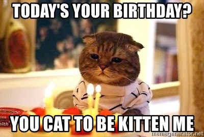 Birthday Cat - Today's your birthday? You cat to be kitten me