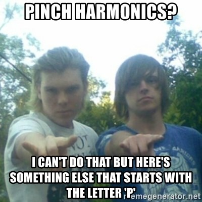 god of punk rock - Pinch harmonics? I can't do that but here's something else that starts with the letter 'p'