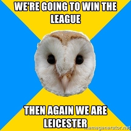 Bipolar Owl - WE'RE GOING TO WIN THE LEAGUE THEN AGAIN WE ARE LEICESTER