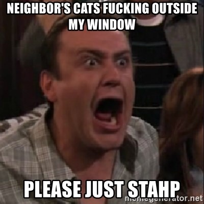 stahp guys - neighbor's cats fucking outside my window please just stahp