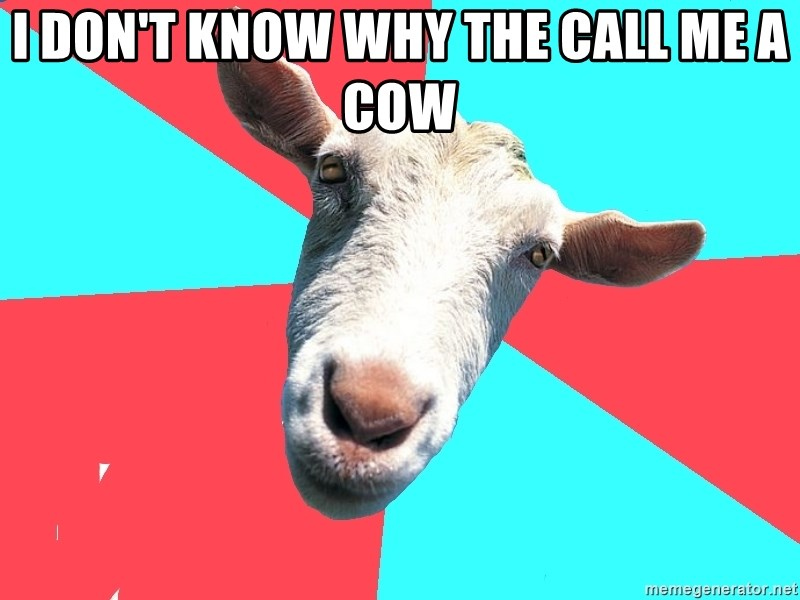 Oblivious Activist Goat - I DON'T KNOW WHY THE CALL ME A COW