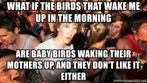 Sudden Realization Ralph - what if the birds that wake me up in the morning are baby birds waking their mothers up, and they don't like it either
