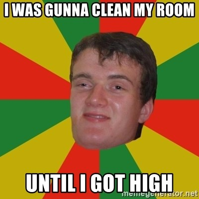 stoner dude - I WAS GUNNA CLEAN MY ROOM  UNTIL I GOT HIGH