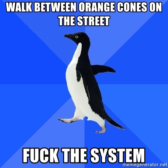 Socially Awkward Penguin - walk between orange cones on the street fuck the system