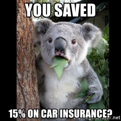 Koala can't believe it - You saved 15% on car insurance?
