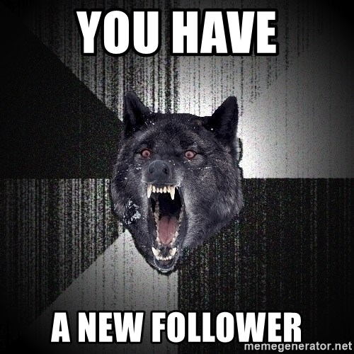 Insanity Wolf - YOU HAVE A NEW FOLLOWER