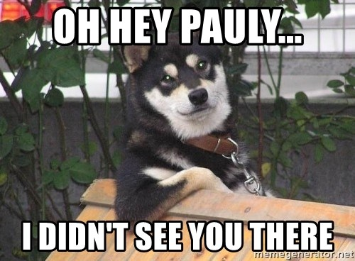Cool Dog - oh hey pauly... i didn't see you there
