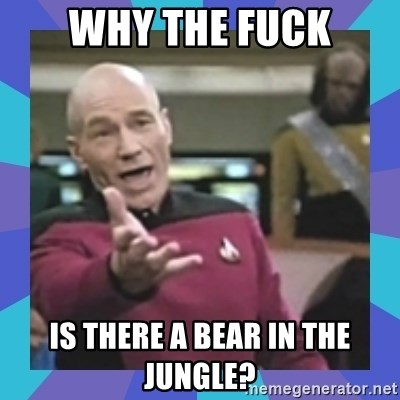 what  the fuck is this shit? - Why the fuck is there a bear in the jungle?