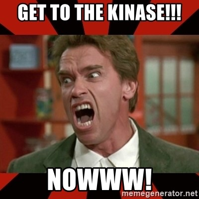 Arnold Schwarzenegger 1 - GET TO THE KINASE!!! nowww!