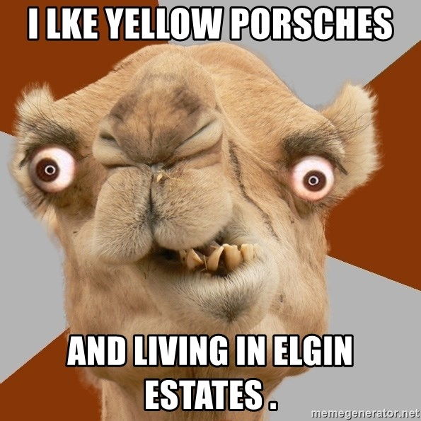 Crazy Camel lol - i lke yellow porsches  and living in elgin estates .