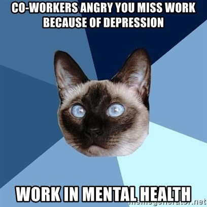 Chronic Illness Cat - CO-WORKERS angry you miss work because of DEpression Work in mental health