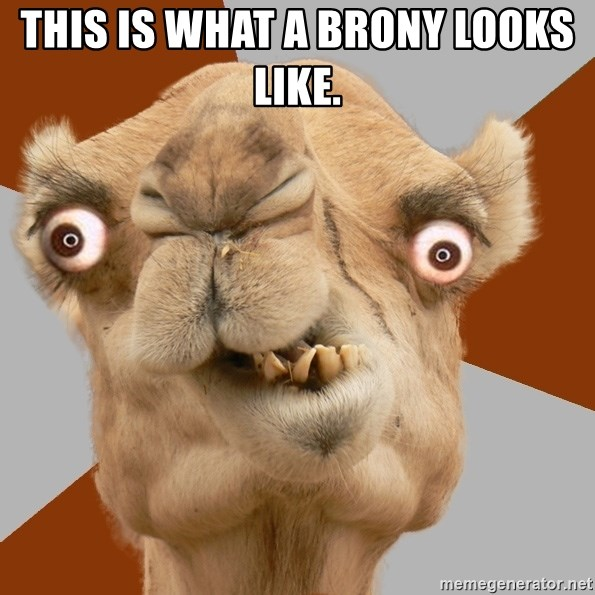 Crazy Camel lol - this is what a brony looks like.