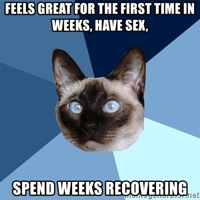 Chronic Illness Cat - feels great for the first time in weeks, have sex, spend weeks recovering
