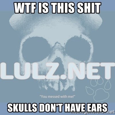 Lulz Dot Net - wtf is this shit skulls don't have ears