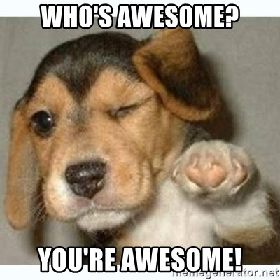 who s awesome you re awesome fist bump puppy meme generator