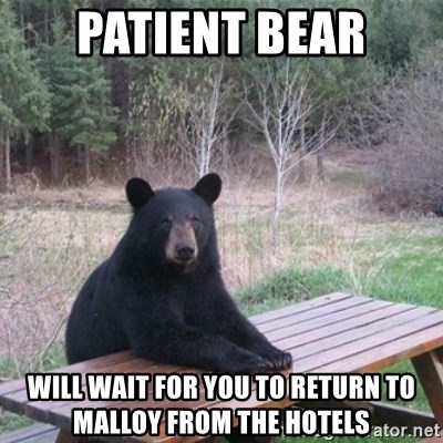 Patient Bear - Patient Bear Will wait for you to return to Malloy from the hotels