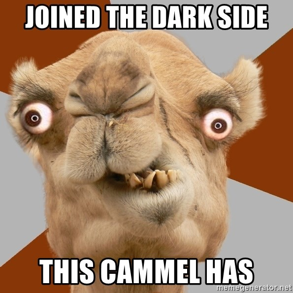 Crazy Camel lol - joined the dark side this cammel has