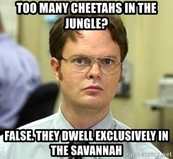 Dwight Shrute - Too many cheetahs in the jungle? False. they dwell exclusively in the savannah
