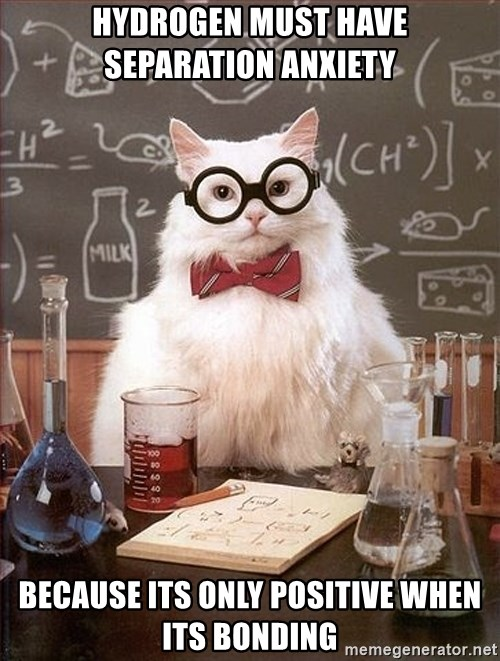 Science Cat - hydrogen must have separation anxiety  Because its only positive when its bonding