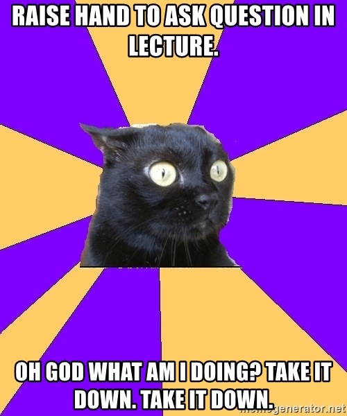 Anxiety Cat - Raise hand to ask question in lecture. oh god What am I doing? take it down. take it down.