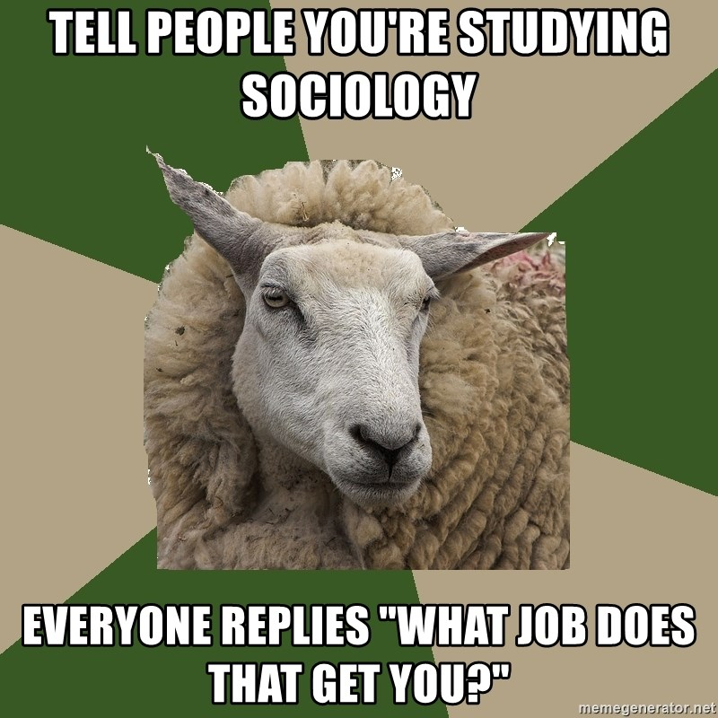 """Sociology Student Sheep - tell people you're studying sociology everyone replies """"what job does that get you?"""""""