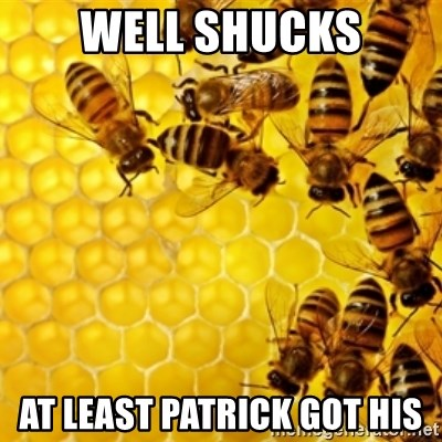 Honeybees - well shucks at least patrick got his