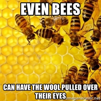 Honeybees - even bees can have the wool pulled over their eyes