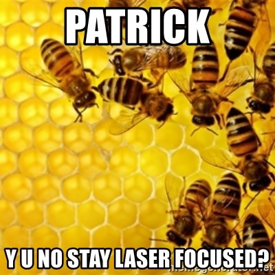 Honeybees - patrick y u no stay laser focused?