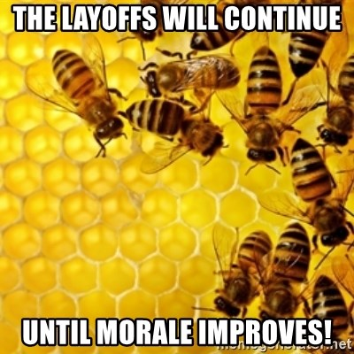 Honeybees - the layoffs will continue until morale improves!