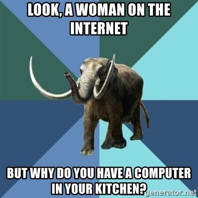Misogyny Mastodon - look, a woman on the internet but why do you have a computer in your kitchen?
