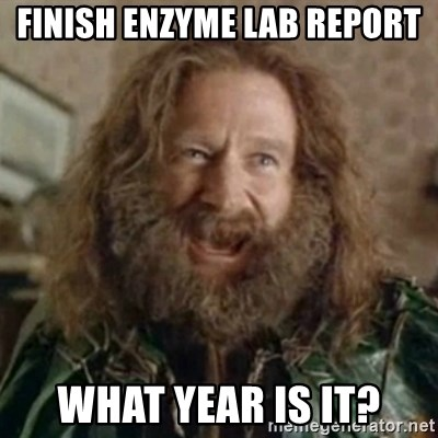 What Year - Finish enzyme lab report what year is it?
