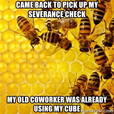 Honeybees - came back to pick up my severance check my old coworker was already using my cube