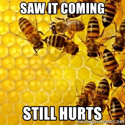Honeybees - saw it coming still hurts